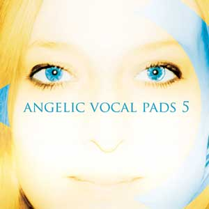 Review - Precisionsound Angelic Vocal Pads 5
